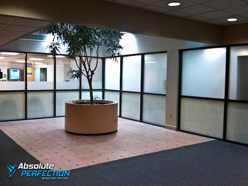 Decorative Frost for Business by Absolute Perfection Tinting Maryland