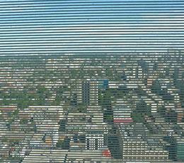 bird fritted window-film-horizontal