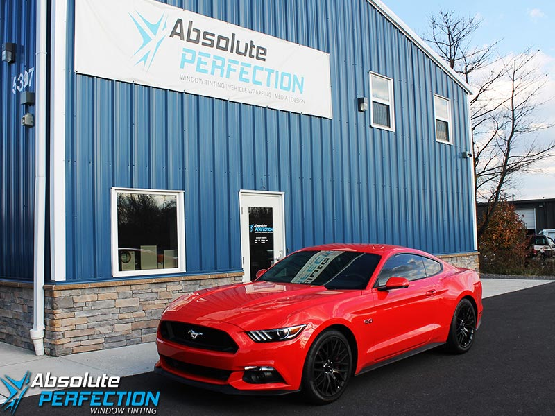 2015 Mustang GT Pinnacle 15%