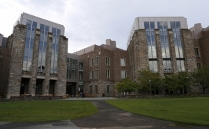 Duke University ciemas bird window film