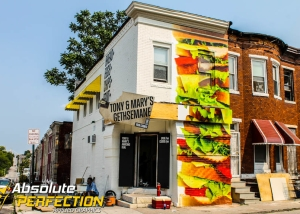 Custom Wall Mural Baltimore Maryland