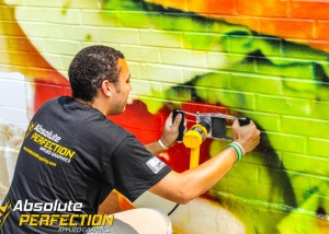 Custom Wall Mural Installation Baltimore Maryland