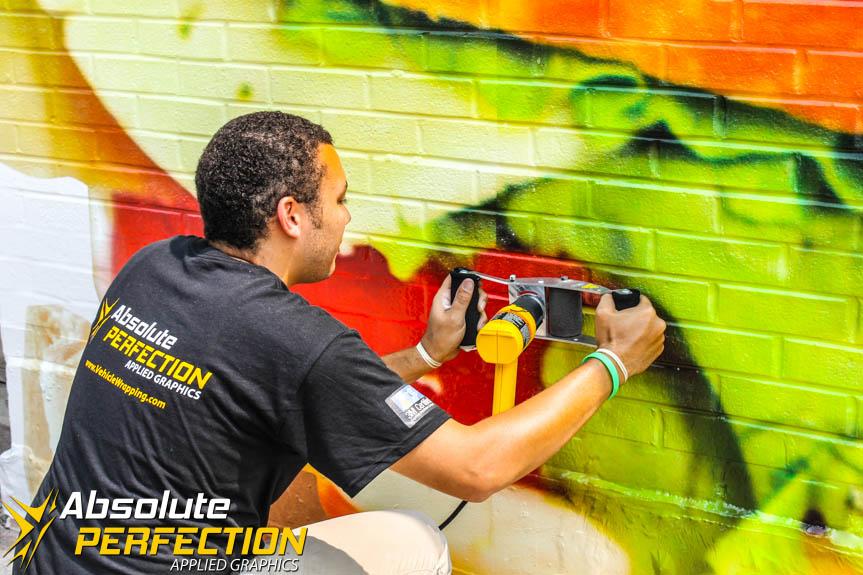 Custom Wall Mural Installation Baltimore Maryland