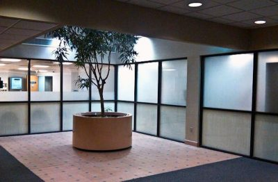 Decorative Frost Film for Business