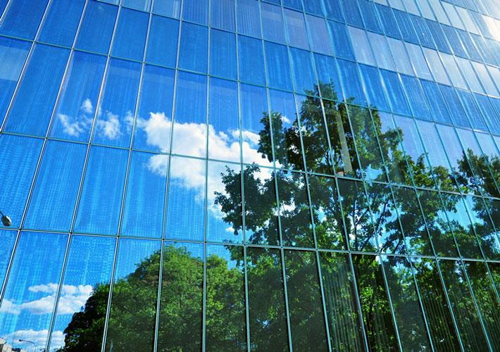bird collision prevention window film